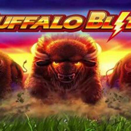 Buffalo Blitz Live! Slot machine de casino ao vivo